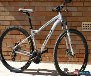 Classic Norco Storm 29er Mountain bike. for Sale