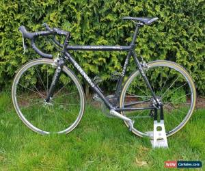 Classic Colnago C50 Custom for Sale