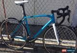 Classic Specialized Allez Race E5 Smartweld Road Bicycle (54cm) Blue for Sale