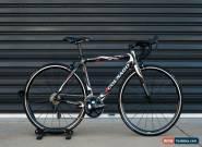 Colnago CX1 52cm 2010 for Sale