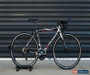Classic Colnago CX1 52cm 2010 for Sale