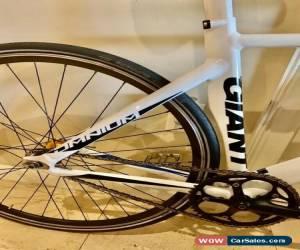 Classic Road Bike Giant Omnium for Sale