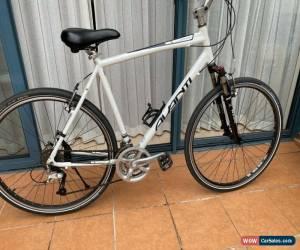Classic Avanti 28 Inch Hybrid Bike  for Sale