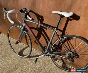Classic Avanti Giro 55cm Med Road Bike for Sale