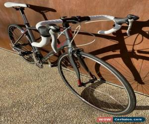 Classic Avanti Giro 55cm Med Road Bike for Sale