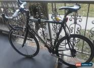 LOOK Carbon Fiber Road Bike for Sale