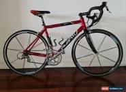 Avanti Corsa Pro road bike - Ultegra Groupset - 46cm - Carbon Forks for Sale