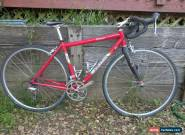Salsa Primero Road Bike 49cm Ultegra Ten Speed for Sale