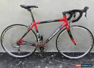 Specialized Roubiax Comp Road Carbon Bike Shimano Ultegra 105 FSA SL-K Triple for Sale