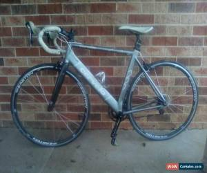 Classic CERVELO P series Bicycle Road Bike Silver with easton wheelset 56 frame size for Sale