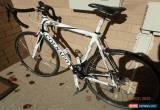 Classic Colnago Ace Full Carbon 56cm Medium Road Bike for Sale