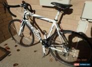 Colnago Ace Full Carbon 56cm Medium Road Bike for Sale