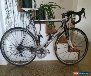 Classic Cannondale for Sale