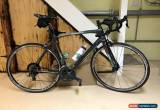 Classic Bianchi Carbon Road Bike Intenso 130 Anniversary Edition for Sale