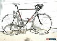 Giant Cadex 980 C, 55cm, carbon/alloy lugs Shimano Ultegra Bontrager Race wheels for Sale