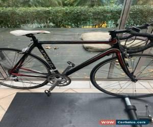 Classic Apollo Pave C Carbon Road Bike  for Sale