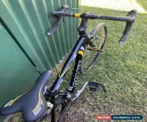 Classic Giant OCR3 Mens Road Bike 50cm Frame for Sale