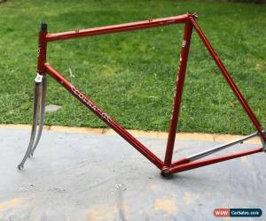 Classic Colnago Mexico ESA Frameset Vintage Collectable Saronni Red 57cms Orig Condition for Sale