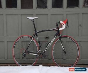 Classic Specialized Tarmac Pro 54cm Carbon Campagnolo Ritchey 16lbs for Sale