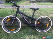 FOCUS Mountain Bike for Sale