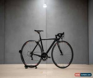 Classic Pro-Lire Road Bike 51cm for Sale