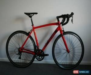Classic Polygon Strattos S2 - Shimano Claris - 8 Speed - 700x28c - 53cm - Medium for Sale