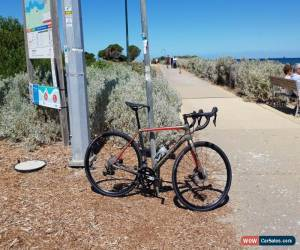 Classic Cannondale Synapse Carbon Disc 105 2019 road Bike for Sale