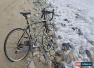Specialized Roubaix Comp Carbon Shimano 105 road bike 700c mavic ksyrium elite  for Sale
