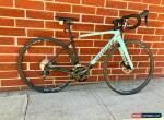 2018 Specialized Roubaix Elite 52 for Sale