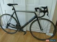 Swift Ultravox - Carbon Road Bike - Campagnolo Record for Sale