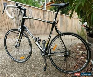 Classic Merida Ride Lite Road Bike XL for Sale