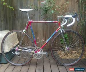 Classic Colnago Master Olympic Art Decor with Campagnolo Chorus for Sale