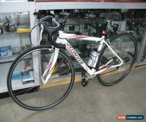 Classic Specialized Allez Road Bicycle for Sale
