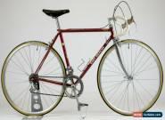 Vintage Eddy Merckx Bike 1982 51cm Corsa Campagnolo Record Cinelli Unicanitor  for Sale